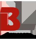 BL Serviços Industriais